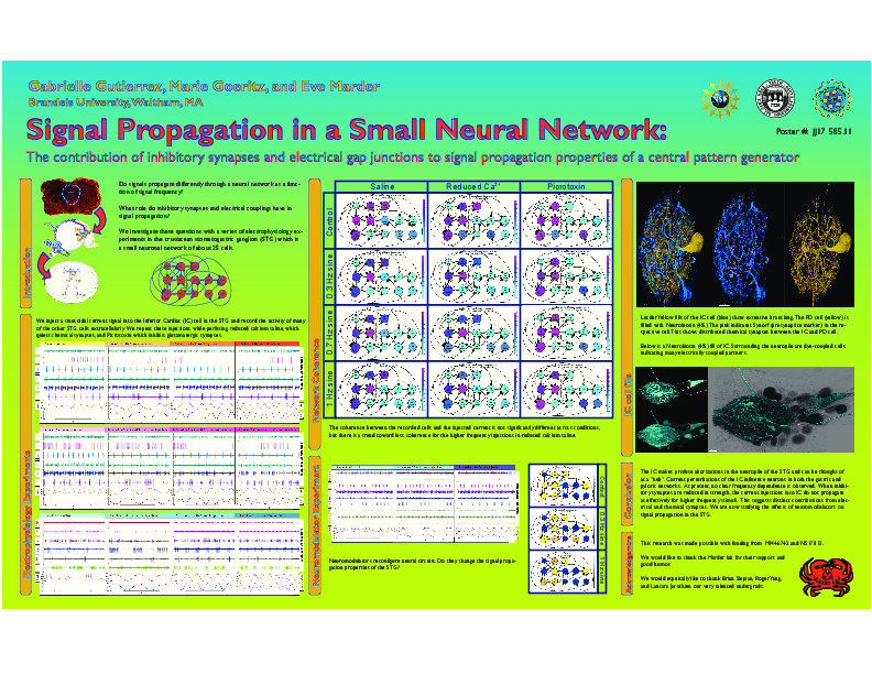 Signal propagation in a small
