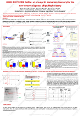 Urine proteome profile: An