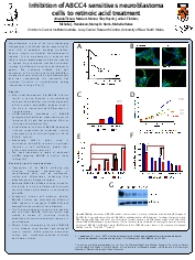 Inhibition of ABCC4 sensitises neuroblastoma