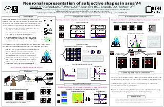 Neuronal representation of subjective shapes