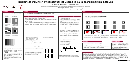 Brightness induction by contextual influences