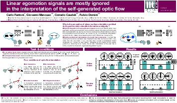 Linear egomotion signals are mostly