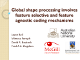 Global shape processing involves feature