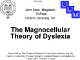 The magnocellular theory of dyslexia
