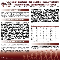 New insights on human evolutionary